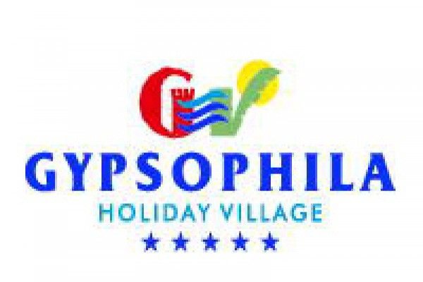 gypsophila81167579-A550-B5DA-6EF1-F69F755CBA3E.jpg